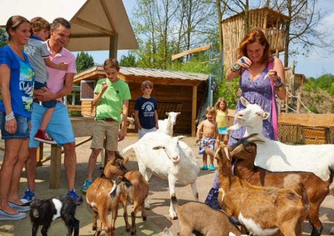 dierenbos_08_vakantiepark